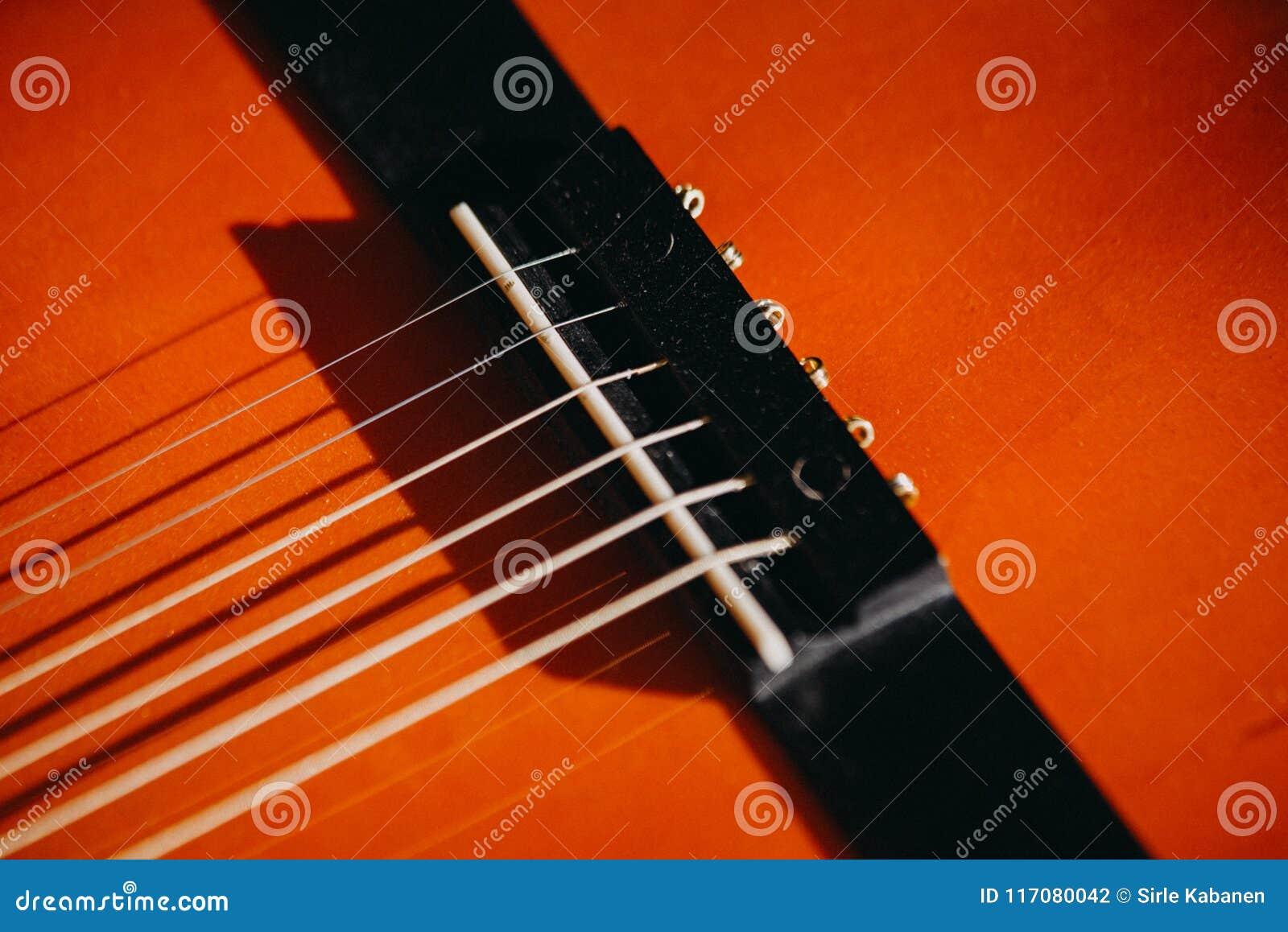 brown red acoustic guitar close up macro
