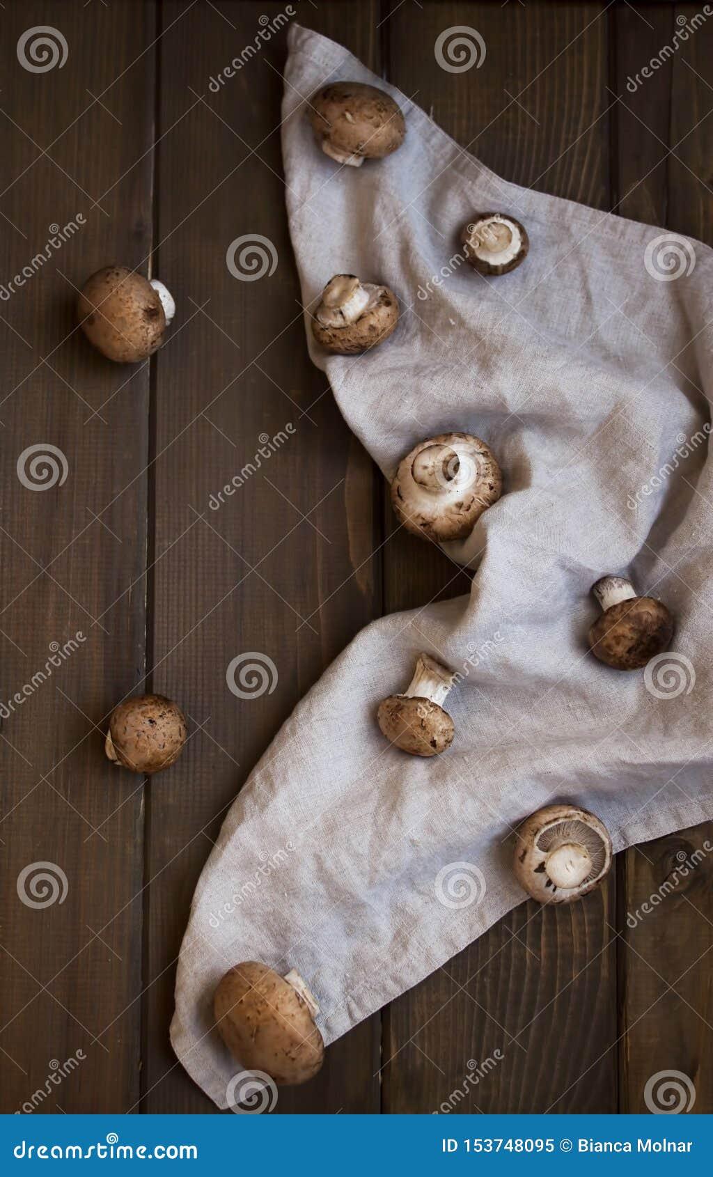 Brown szampiniony na nieociosanym tle