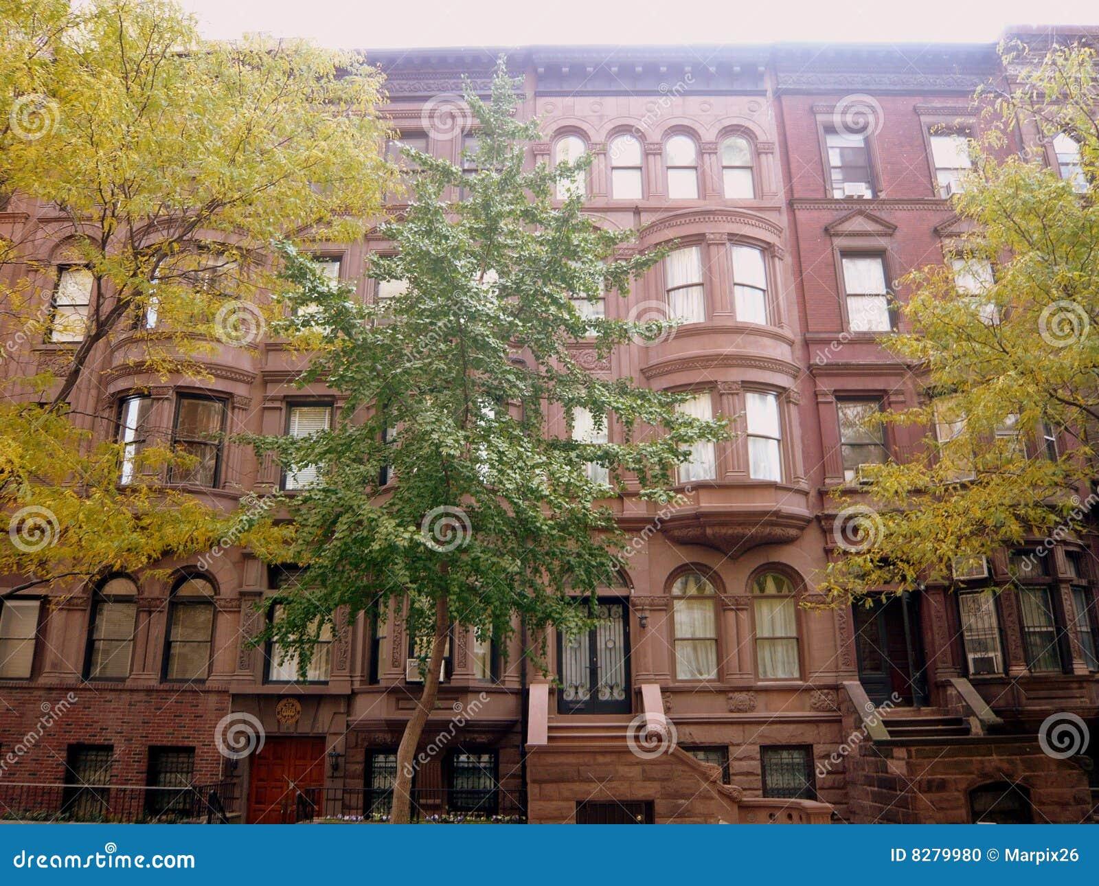 Manhattan Wohnung brownstone wohnungen manhattan stockfoto bild leuchte insel