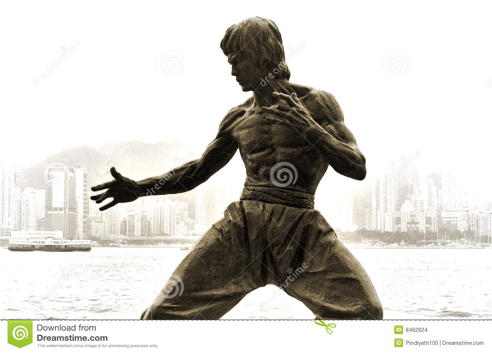 Bruce άγαλμα καταφυγίων