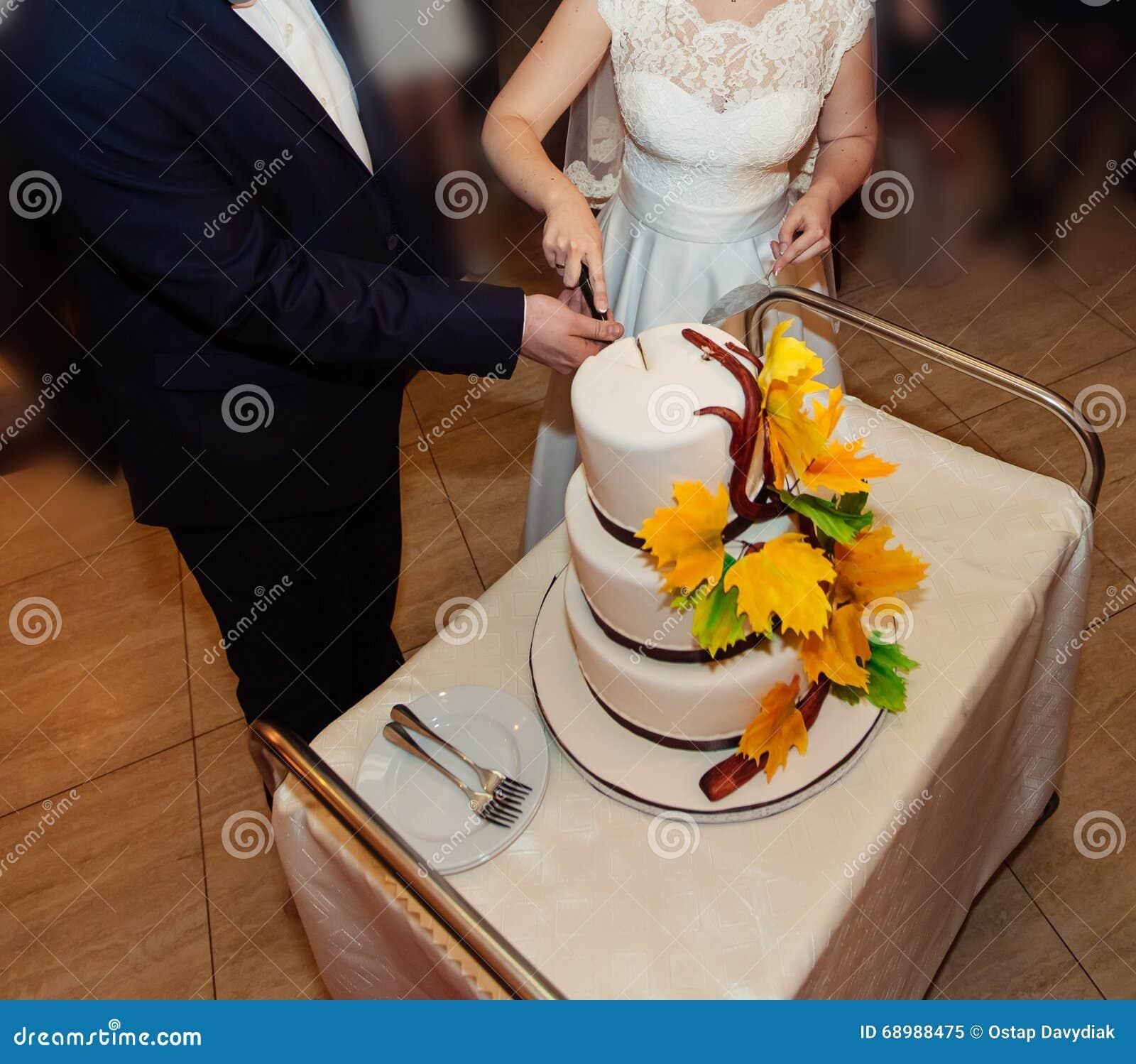 Brud och brudgum på bröllopmottagandet som klipper bröllopstårtan