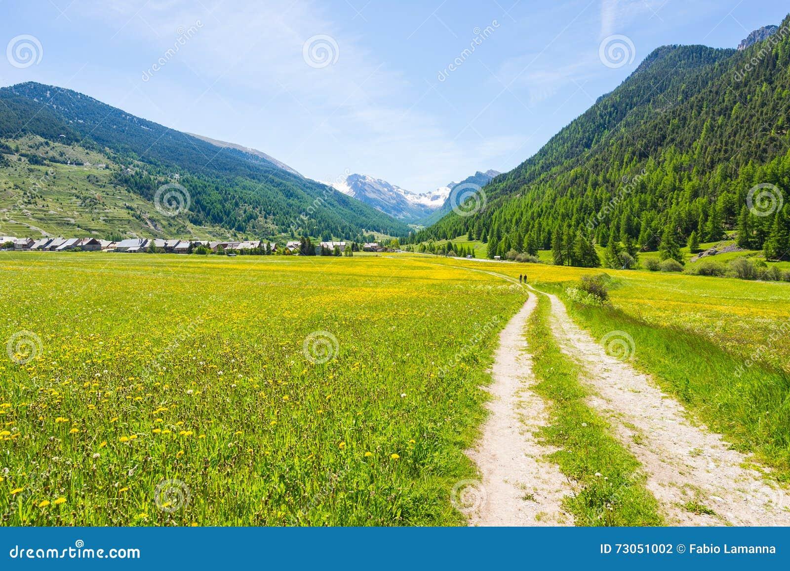 Brud wiejska droga krzyżuje kwiaciaste łąki, góry i las w, scenicznym wysokogórskim krajobrazie i markotnym niebie Lato przygoda