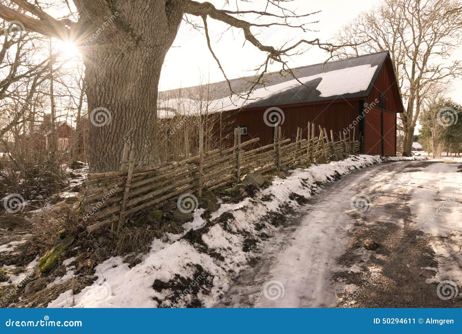 Brudu sposób w s zimy szwedzkim krajobrazie