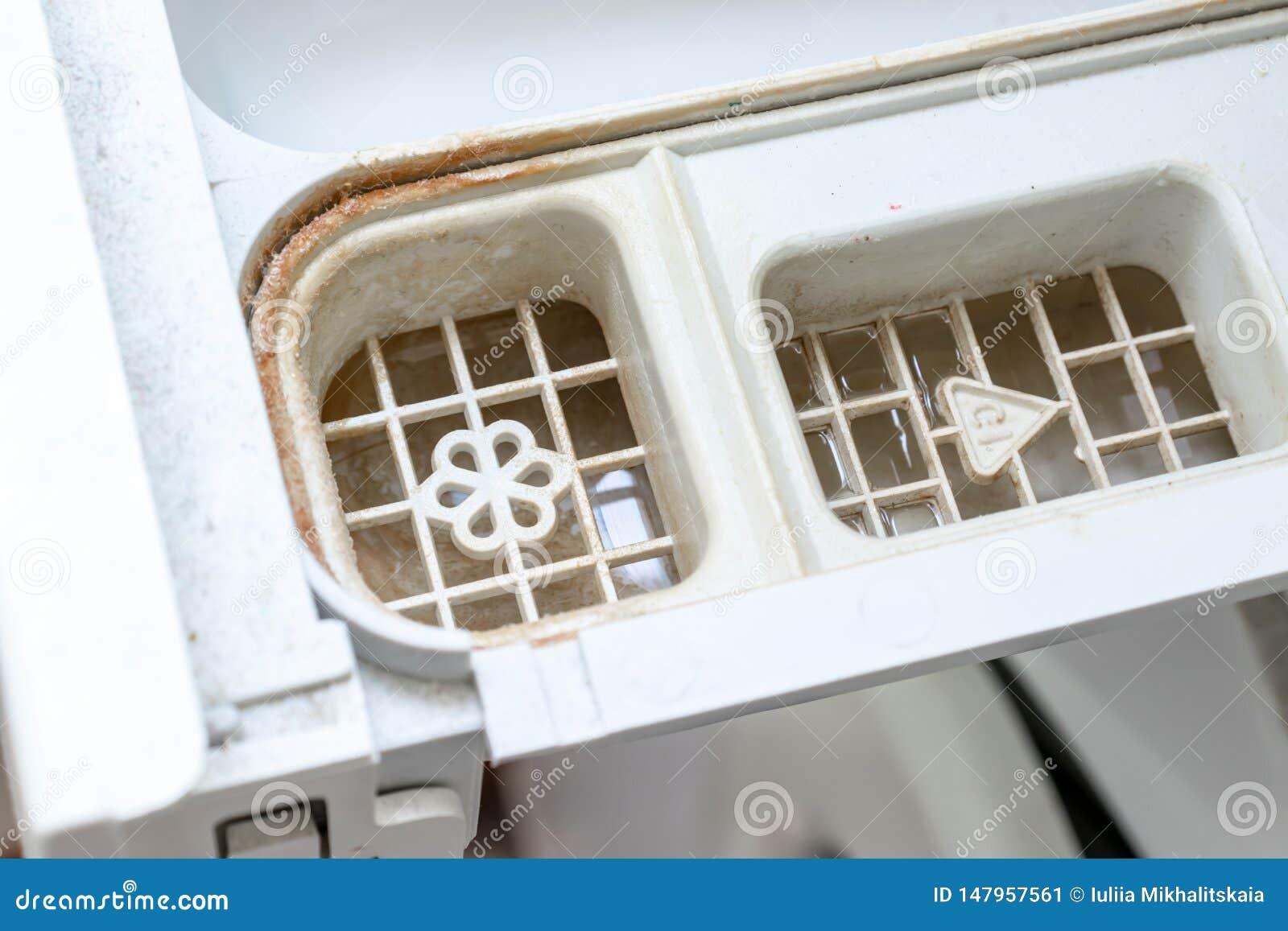 Brudzi pleśniowego pralka detergent i tkaniny conditioner aptekarki kreślarza przedział zamkniętych w górę Foremka, rdza i limesc