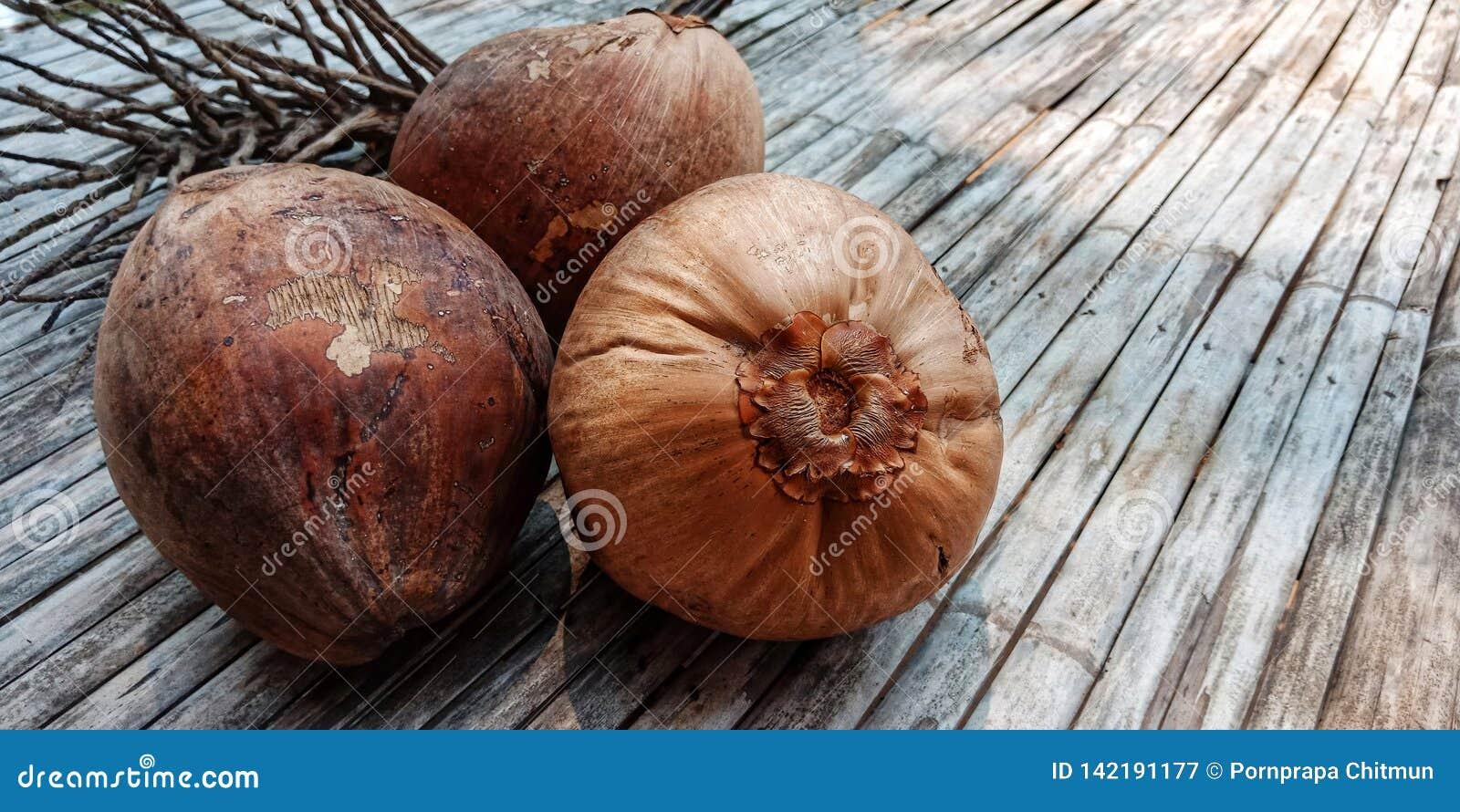 Bruin oud kokosnotenfruit