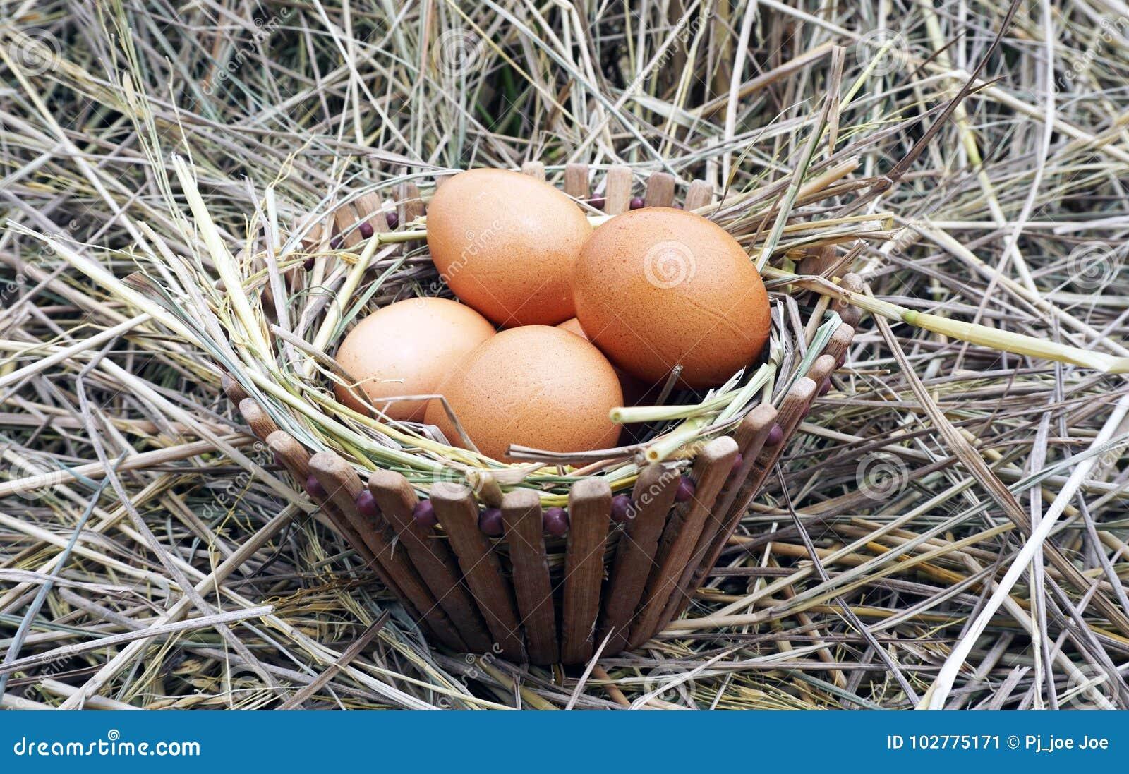Bruine eieren in houten kom