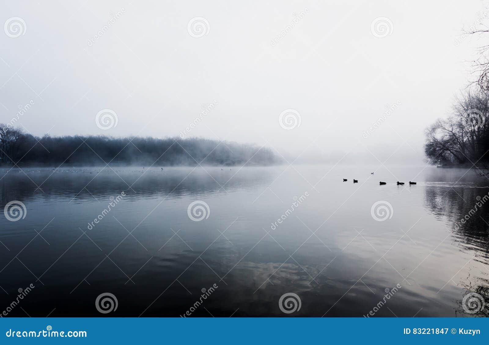 Brume planant au-dessus d un lac froid en parc de Goldsworth, Surrey, Wokin