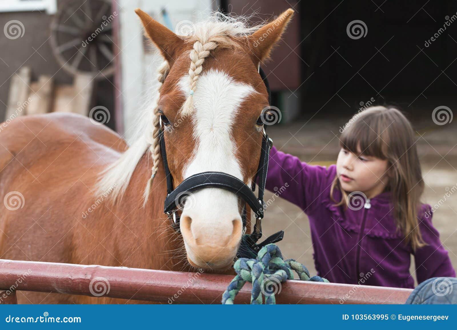 Brun häst för små Caucasian flickaslaglängder