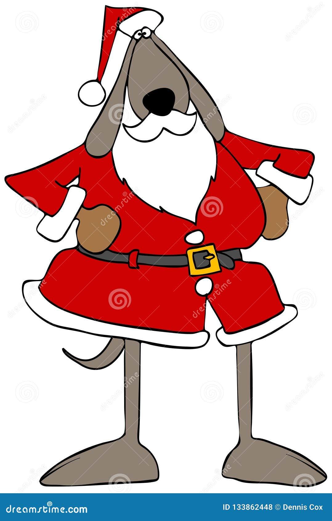 Brun hund som bär en Santa Claus dräkt