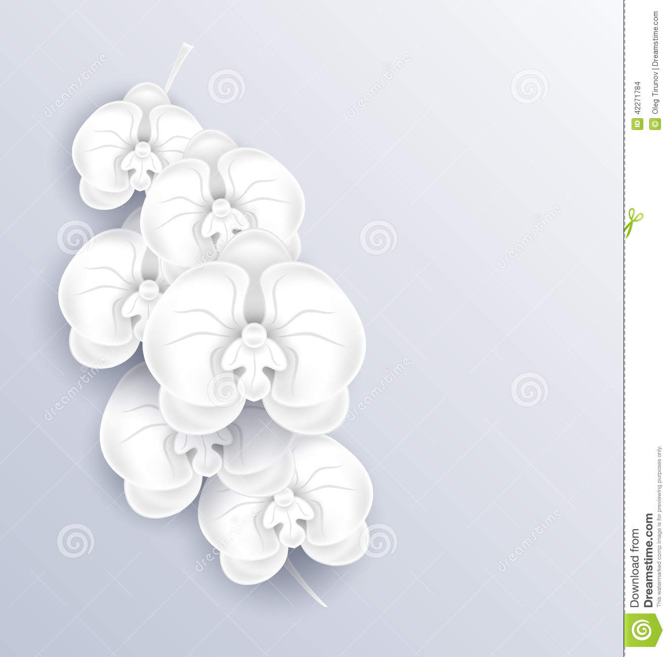 Brunch of beautiful orchids paper craft template stock vector brunch of beautiful orchids paper craft template mightylinksfo