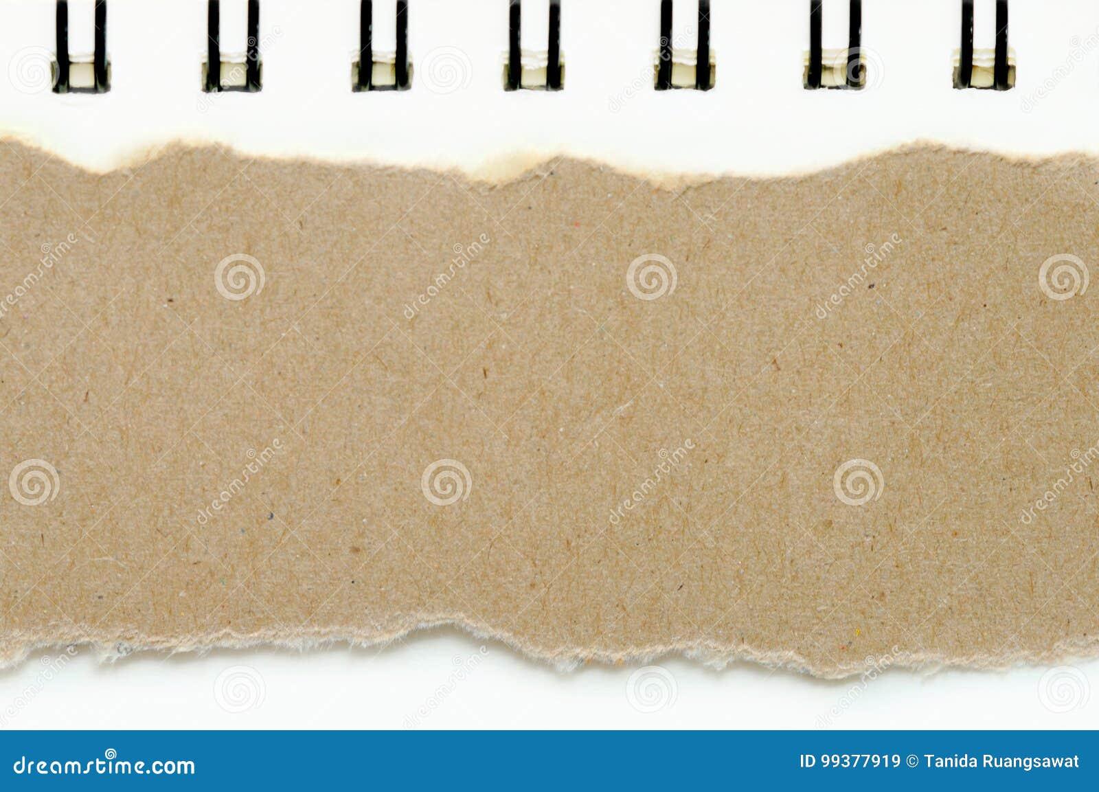 Brunt rivit sönder papper på bakgrund för bokvitbokfärg, har kopieringsutrymme för satt text
