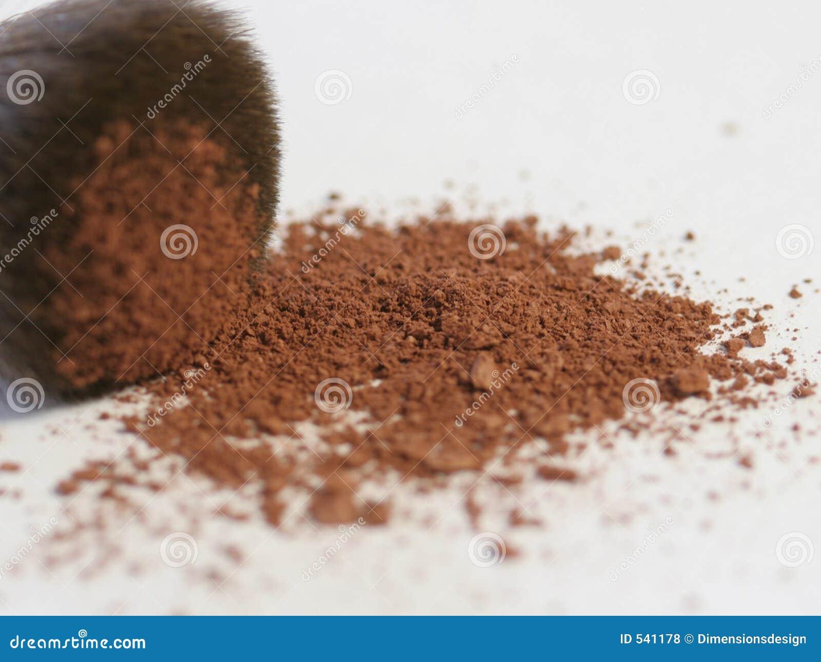 Brush with blush powder