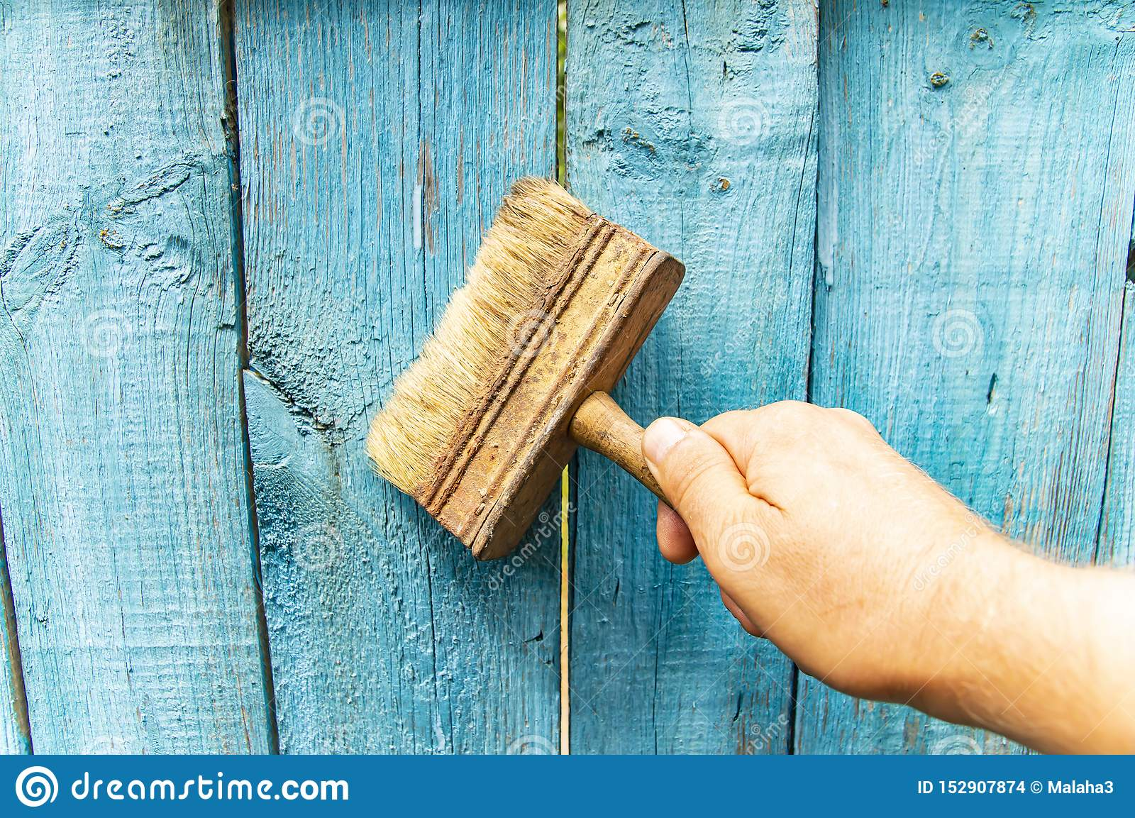 Brush in hand - painting a wooden fence