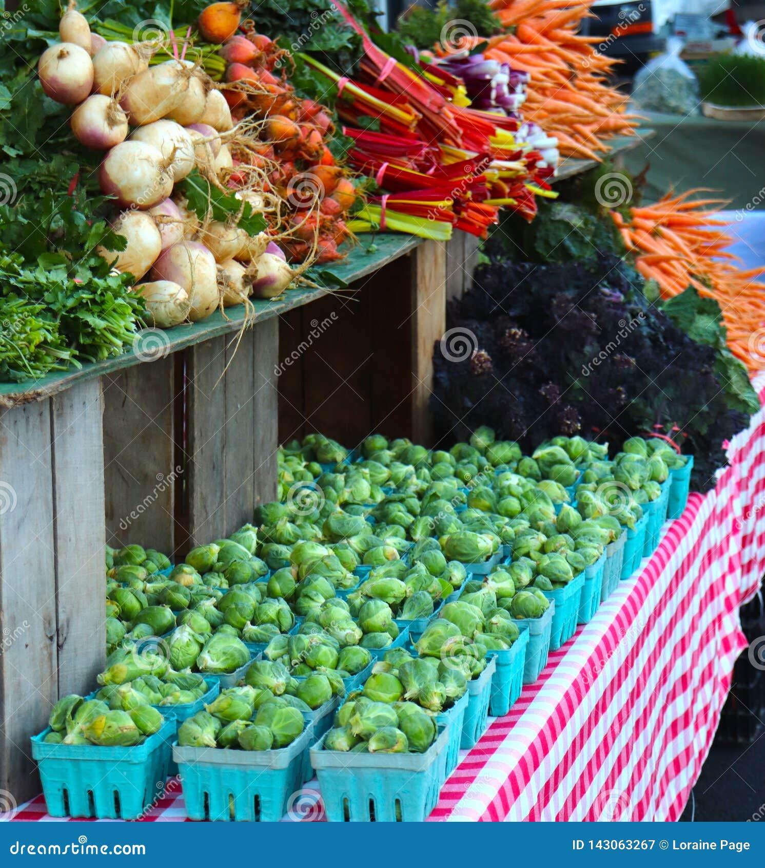 Brussel - groddar, den schweiziska charden sammanfogar andra gr?nsaker p? bondens marknad