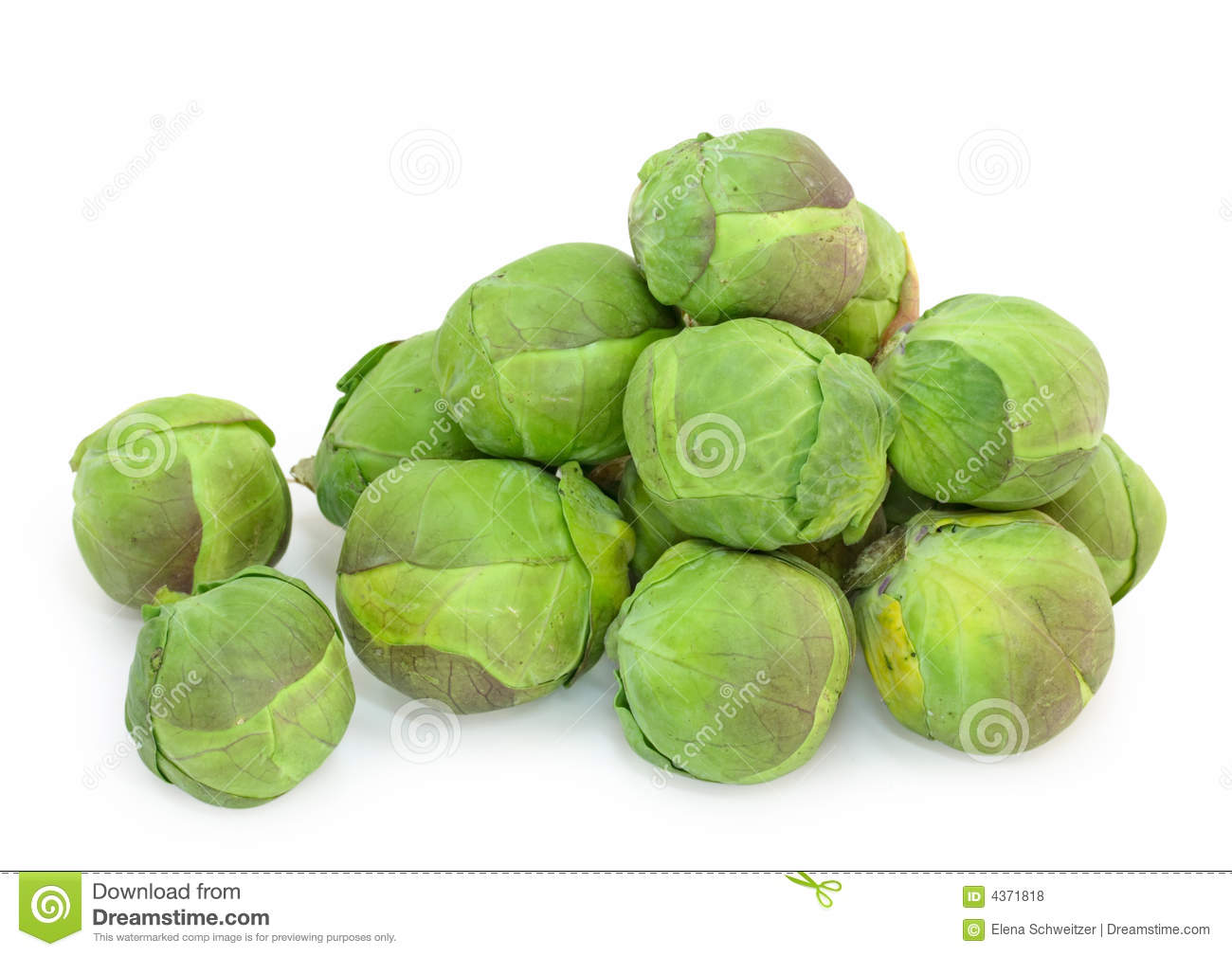 how to make sprouts at home in sprout maker