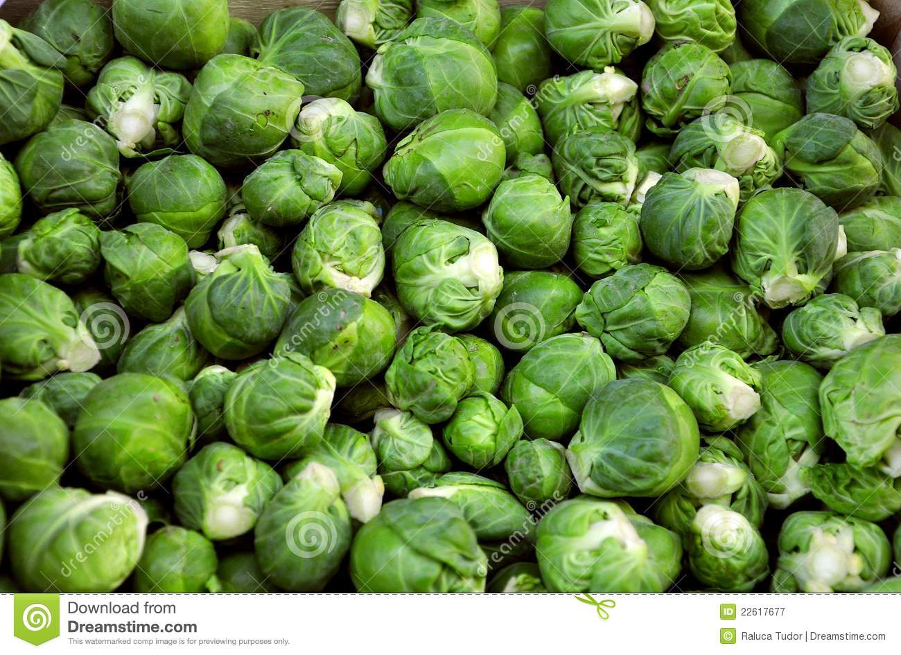 Brussel sprouts on sale in a market