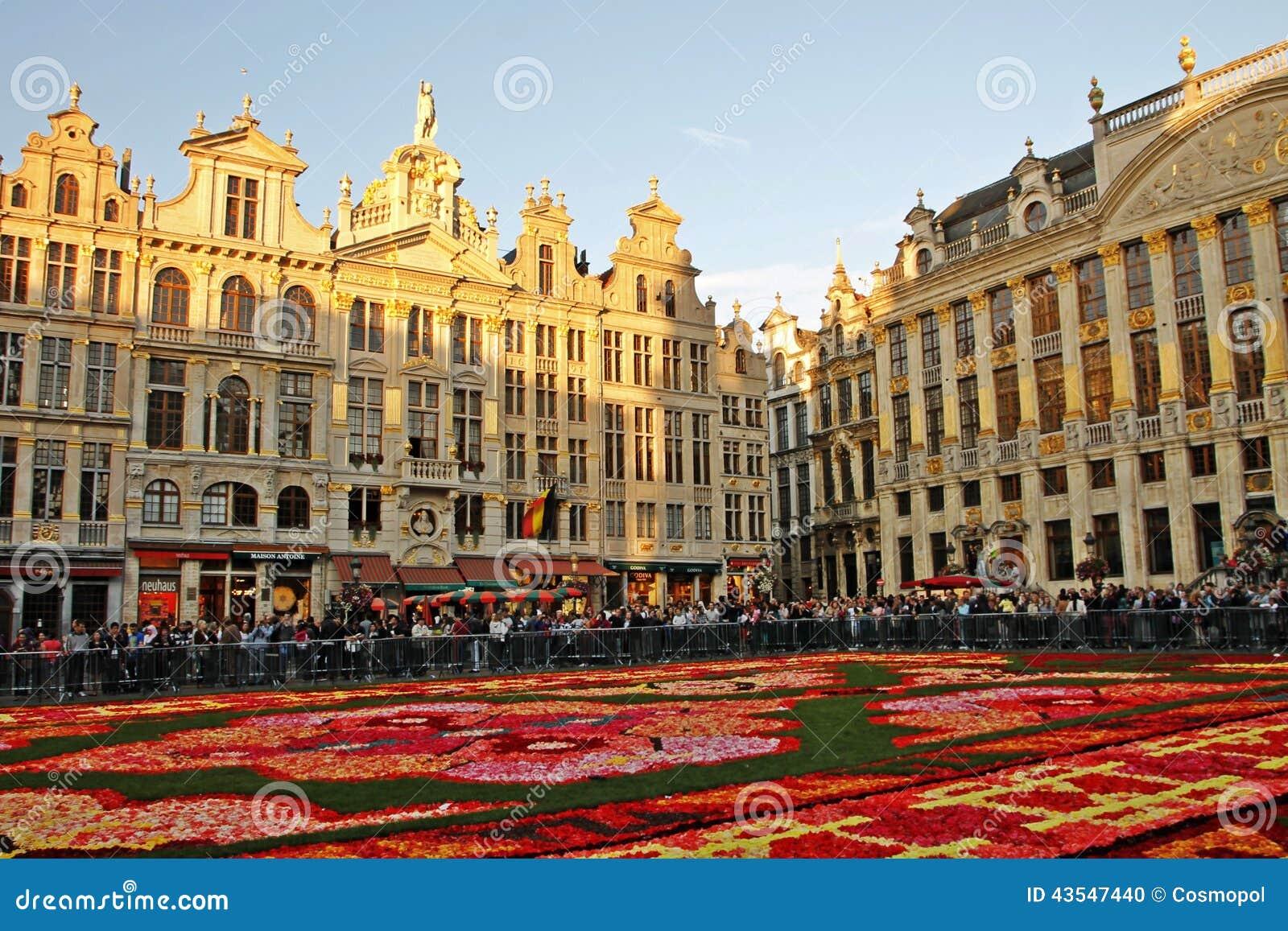 Brussels Flower Carpet Festival 2016 Carpet Vidalondon