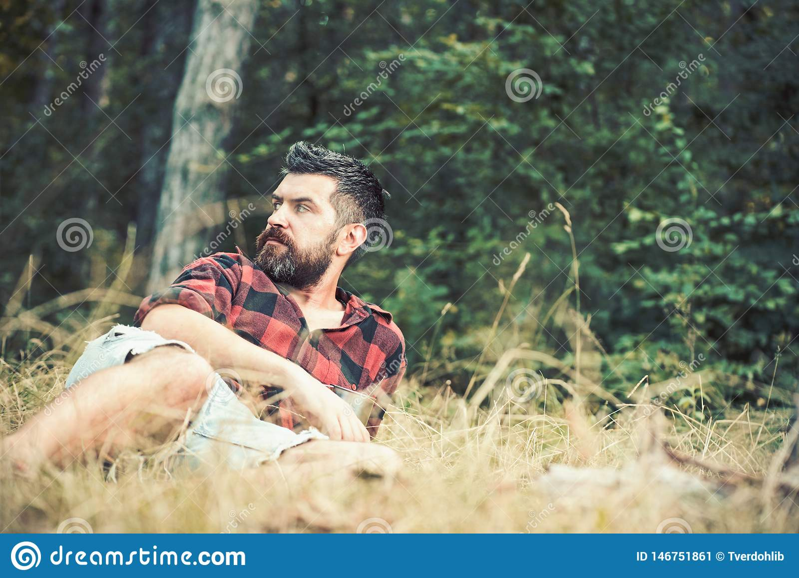 Guy lying on grass in park or forest. Camping in woods. Bearded man with blues eyes looking to the side. Summer leisure
