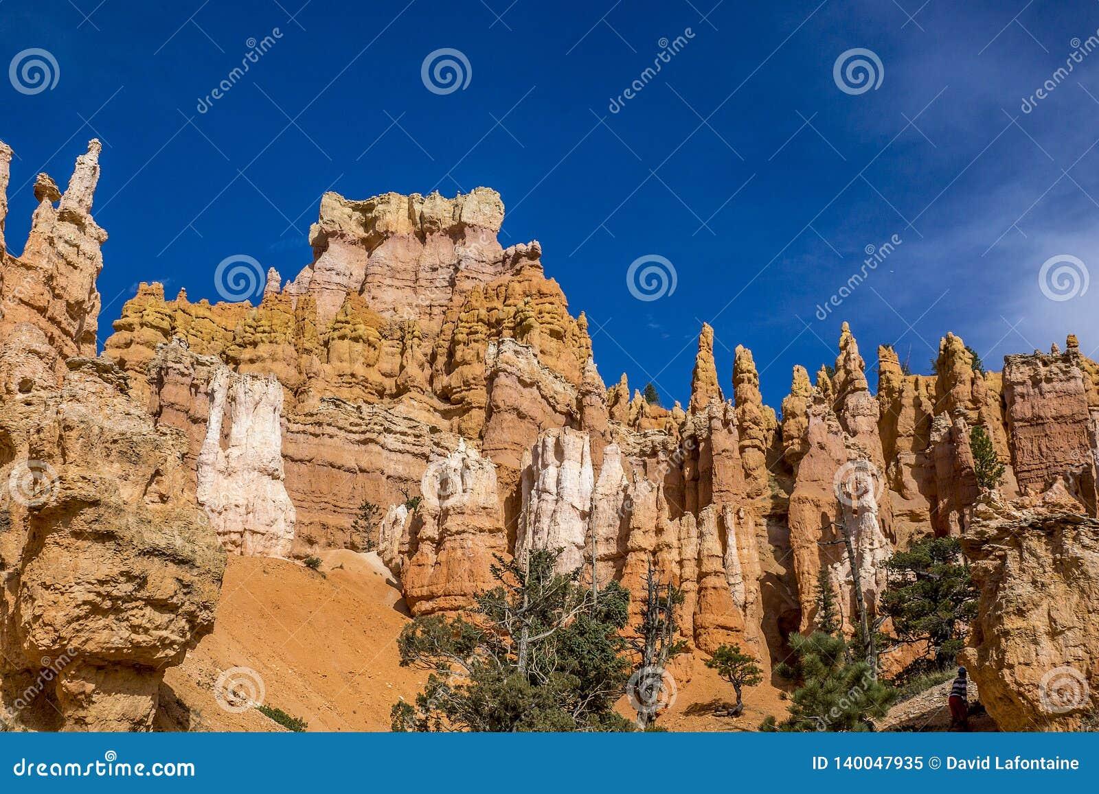Bryce Canyon Hoodoos que mira para arriba de pista de senderismo