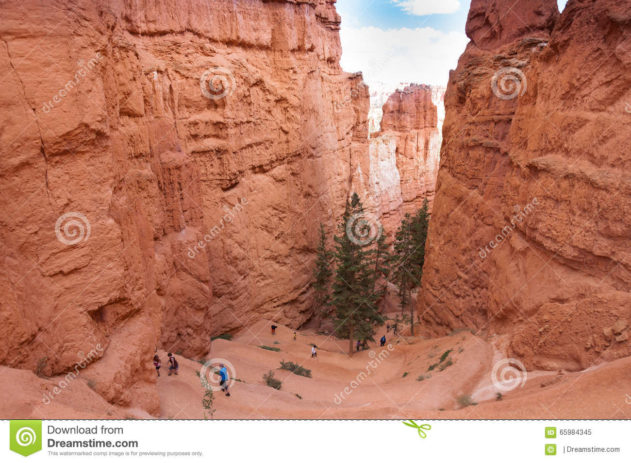 Bryce Canyon National Par United States  city photos : The Bryce Canyon National Park, Utah, United States.
