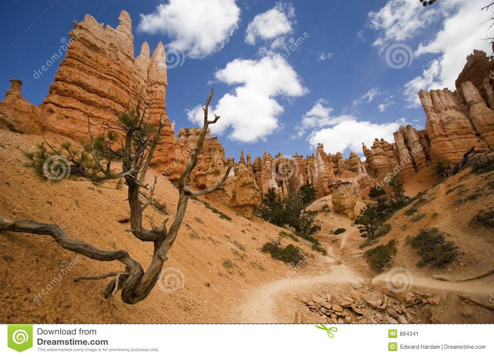 Bryce canyon toru