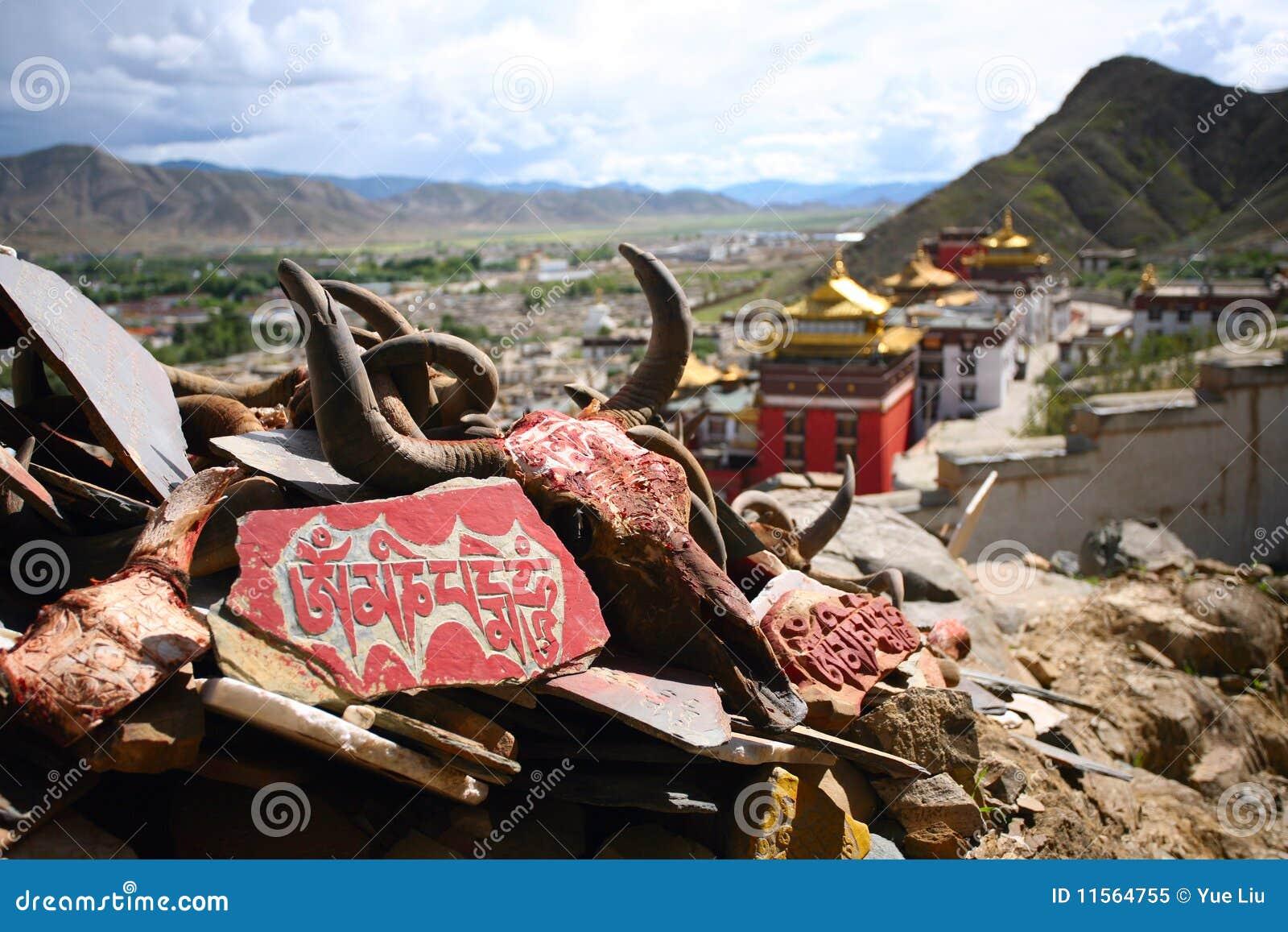 Brzęczenia mani mantry monasteru om padme Tibet