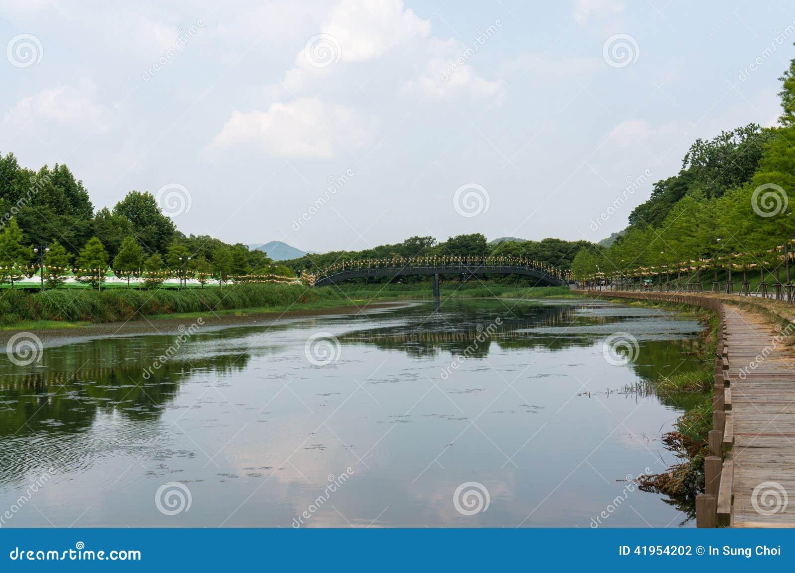 Brzeg rzeki park