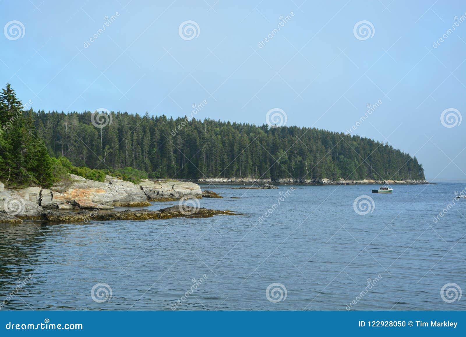 Brzegowy Maine
