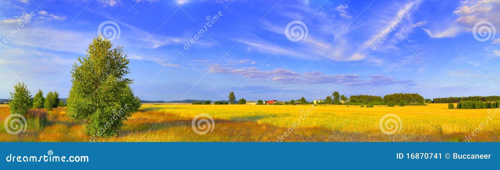 Brzozy wiejski krajobrazowy panoramiczny