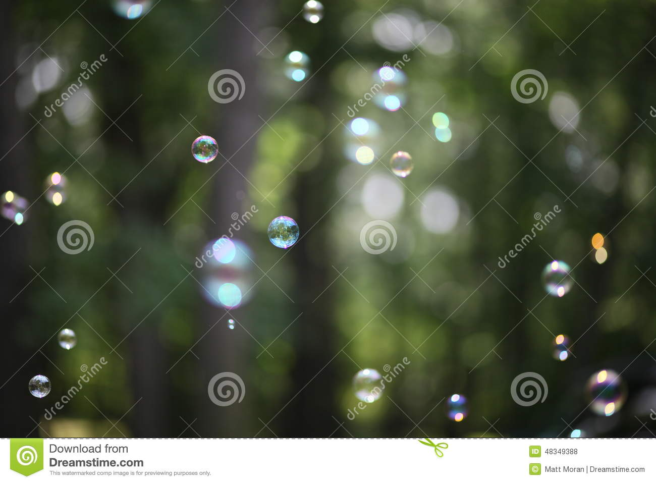 Download Bubble Forest - Abstract Dreams Of Peace Purity And Tranquility Stock Photo - Image of true, bubble: 48349388