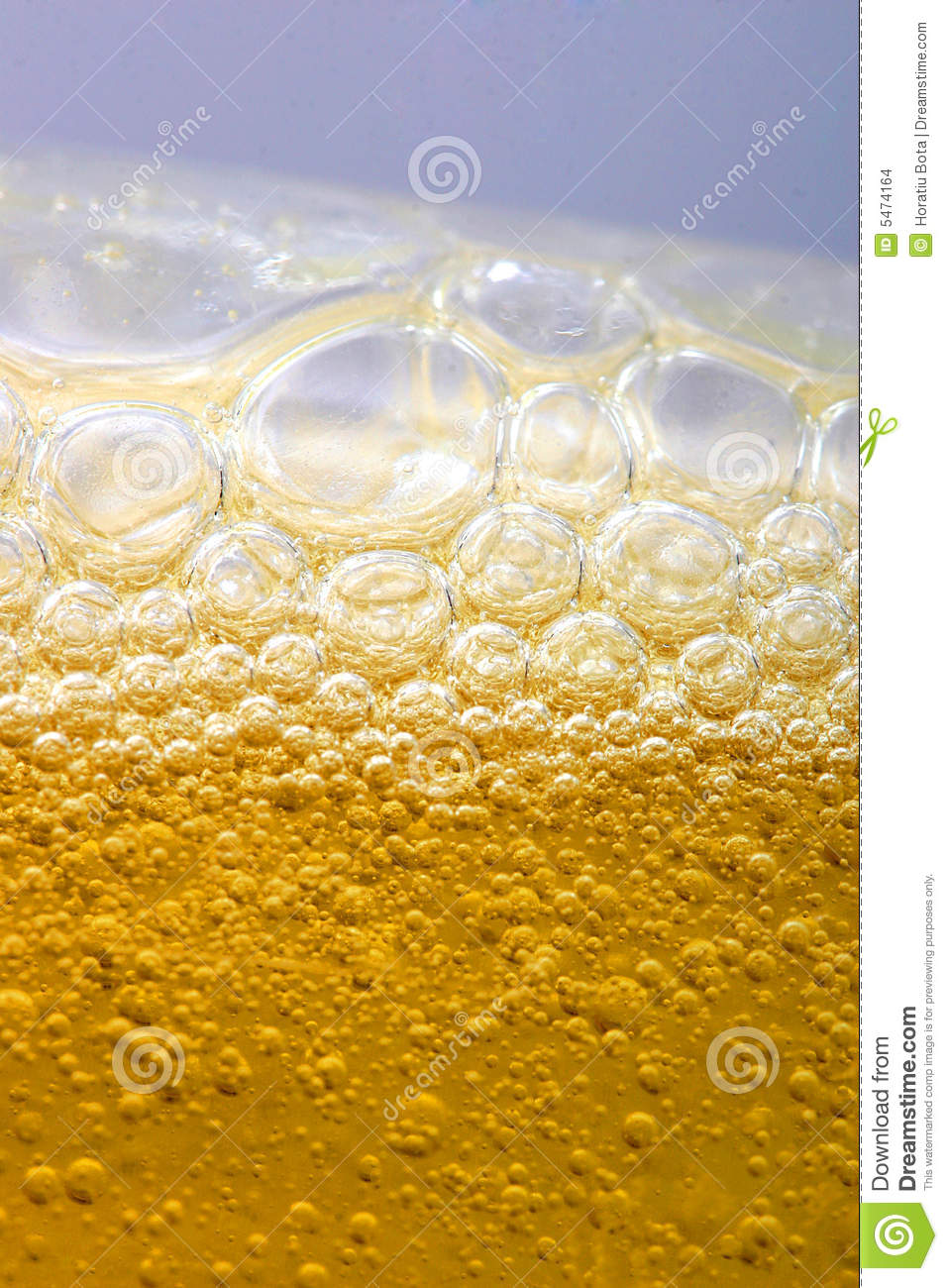 Bubbles in beer
