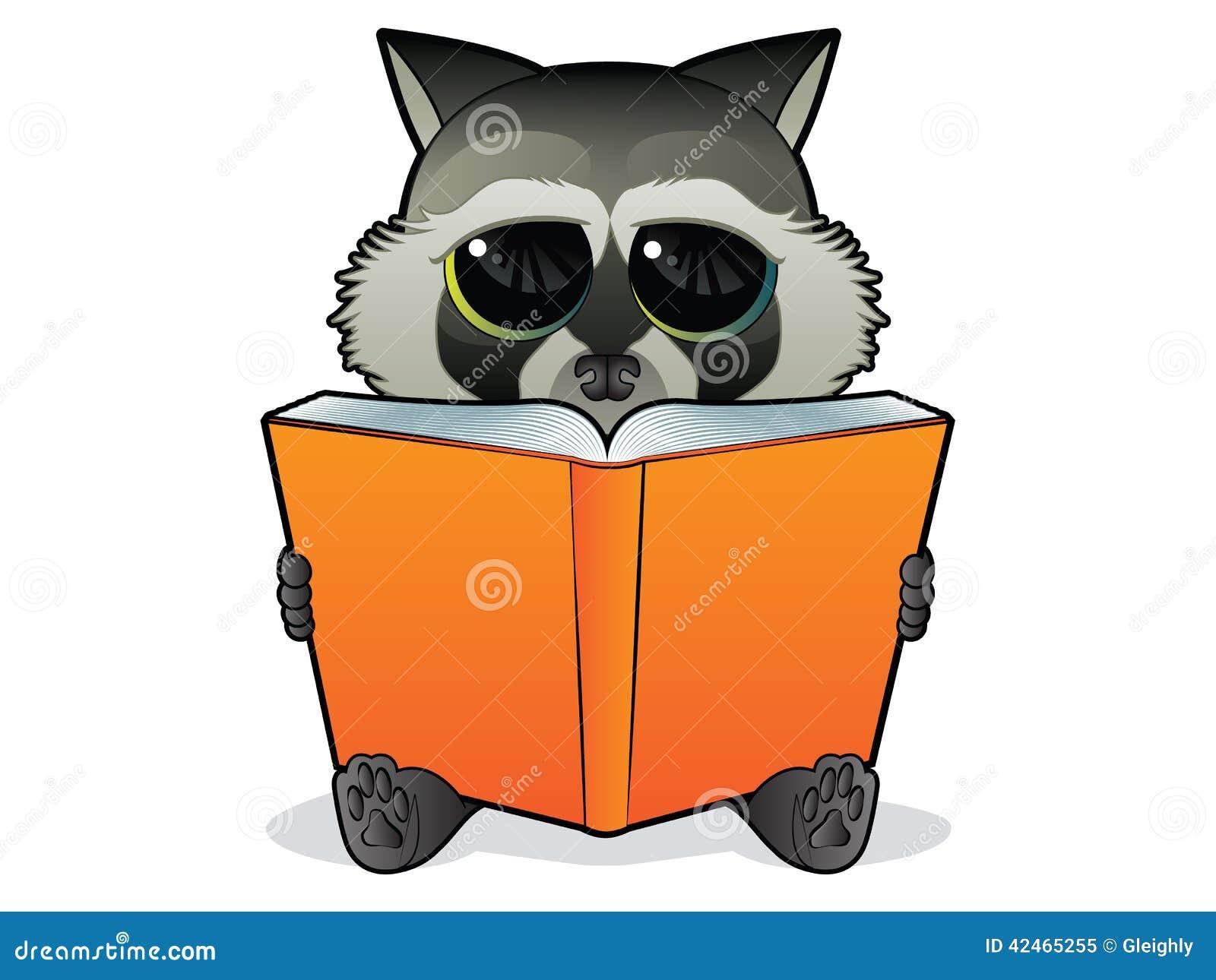 Buch-Lesewaschbär