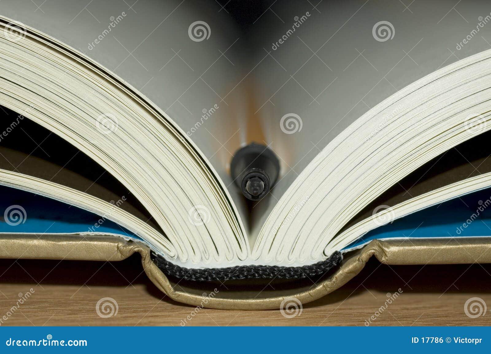 Buch mit Feder