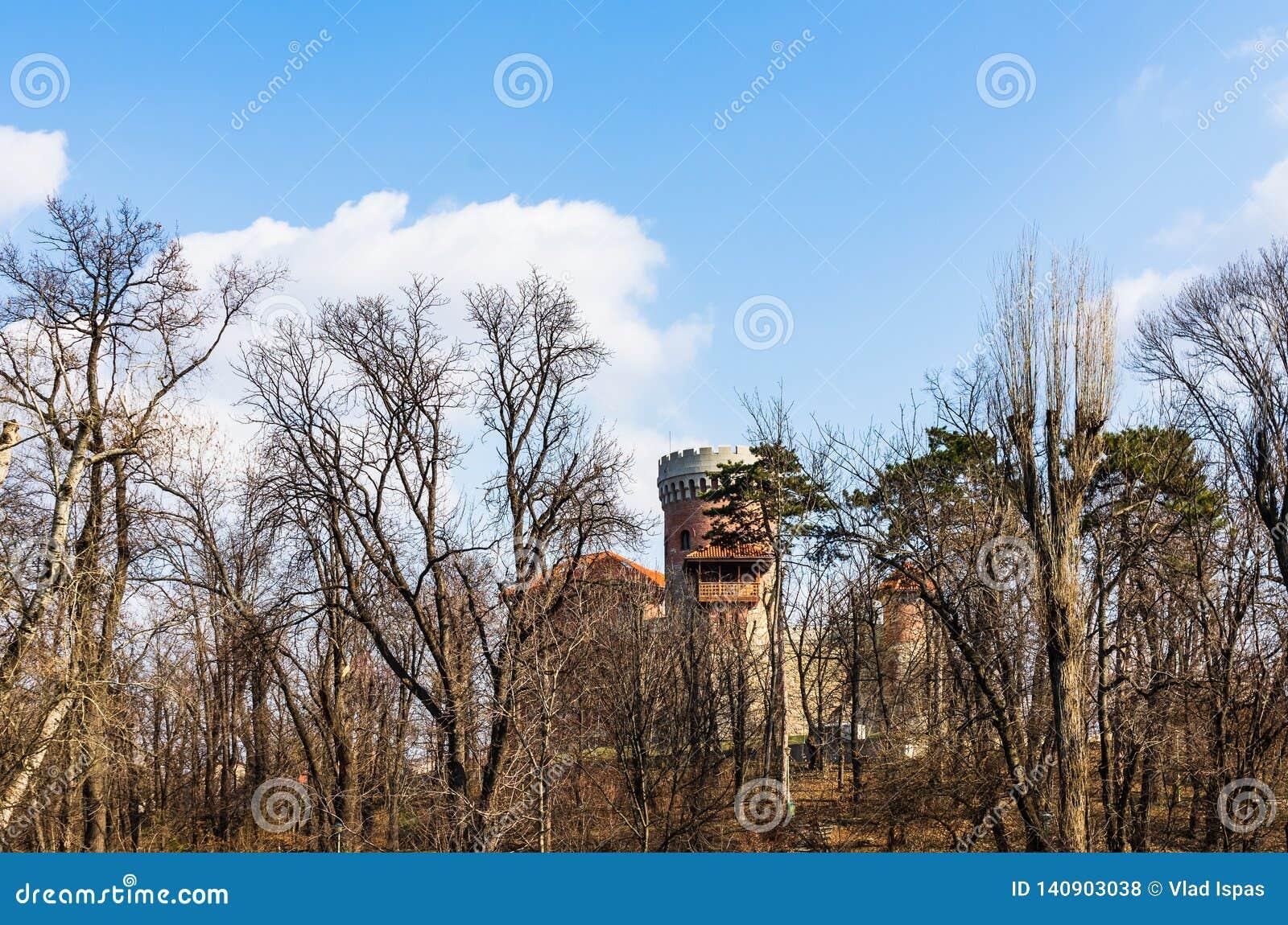 Bucharest, Rumunia - 2019 Vlad Tepes kasztel od Bucharest Carol parka