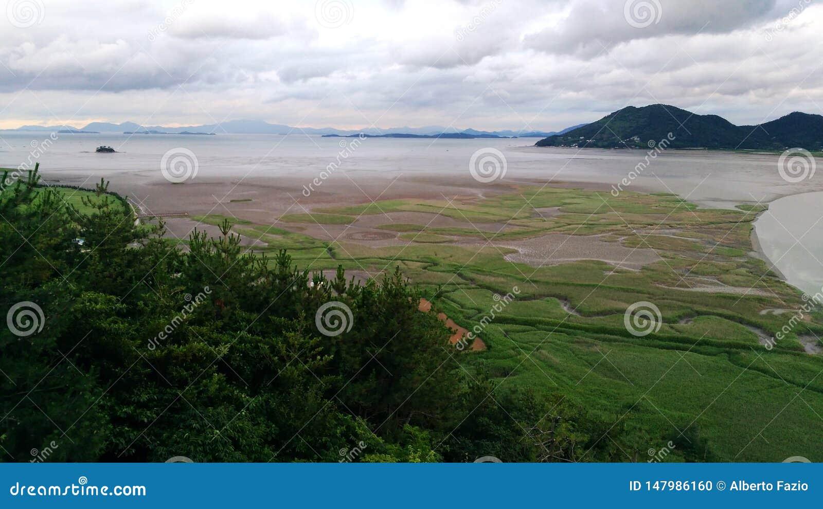Bucht-Sumpfgebietreserve