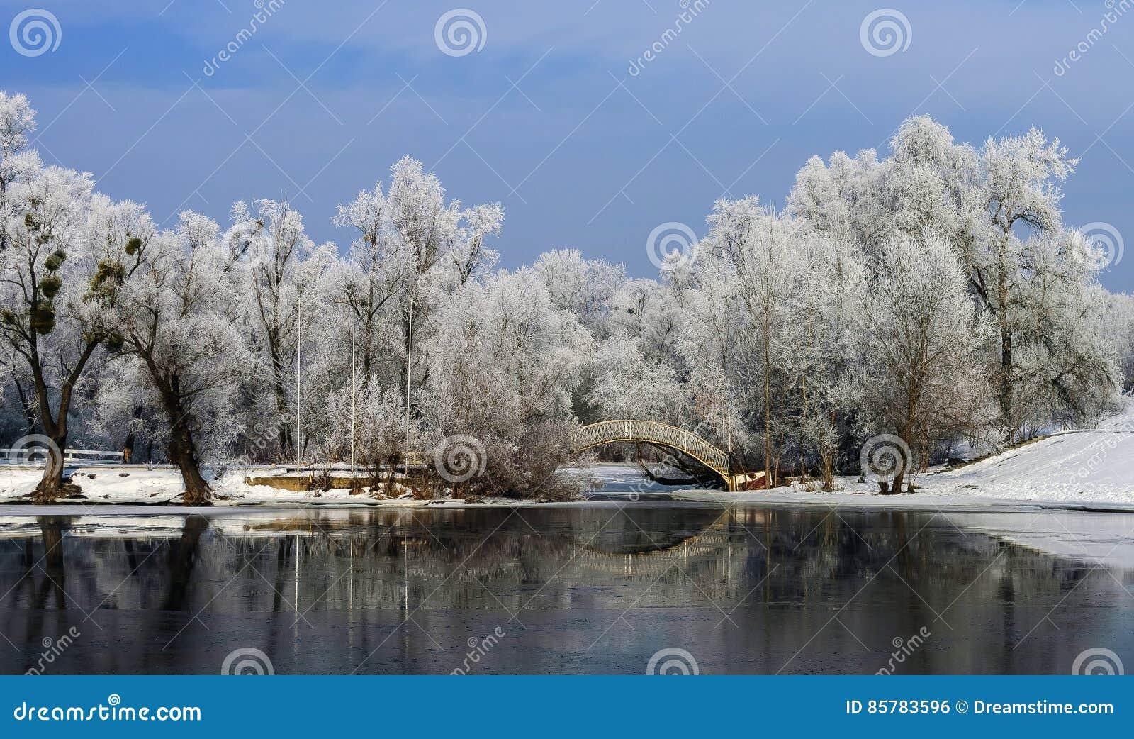 Buckelbrücke über der Flussbucht unter großen Bäumen im Frost