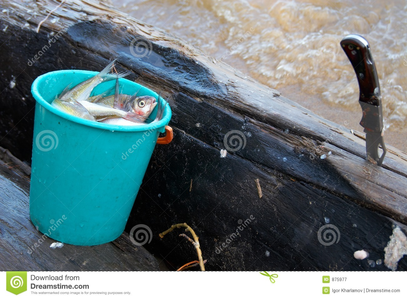 Bucket fish and knife royalty free stock photography for Bucket of fish