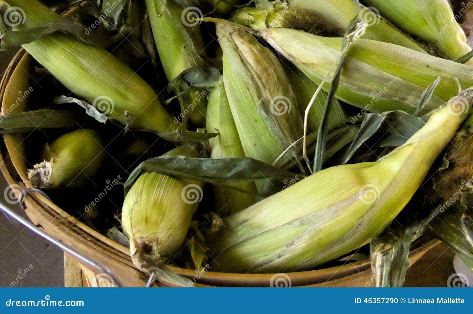 Bucket si maïs