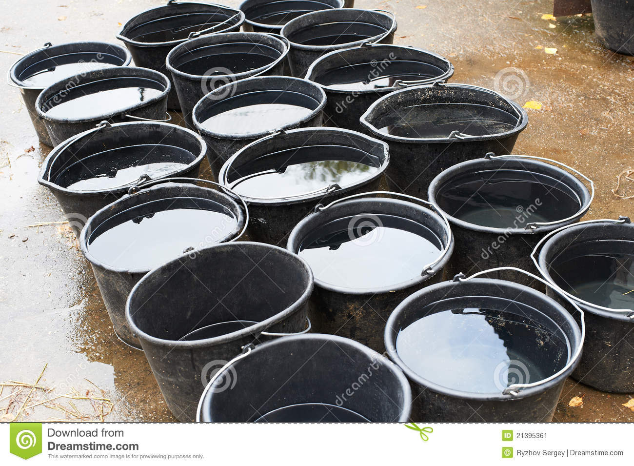 Buckets Of Water For Drinking Horses Stock Image - Image: 21395361