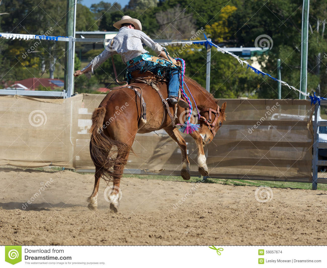 how to break a horse from bucking