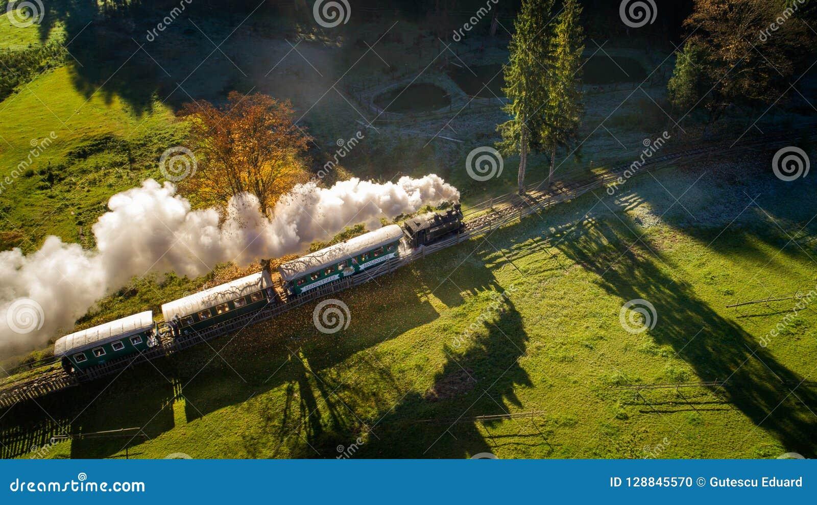 Bucovina秋天日出风景在有薄雾和山的罗马尼亚