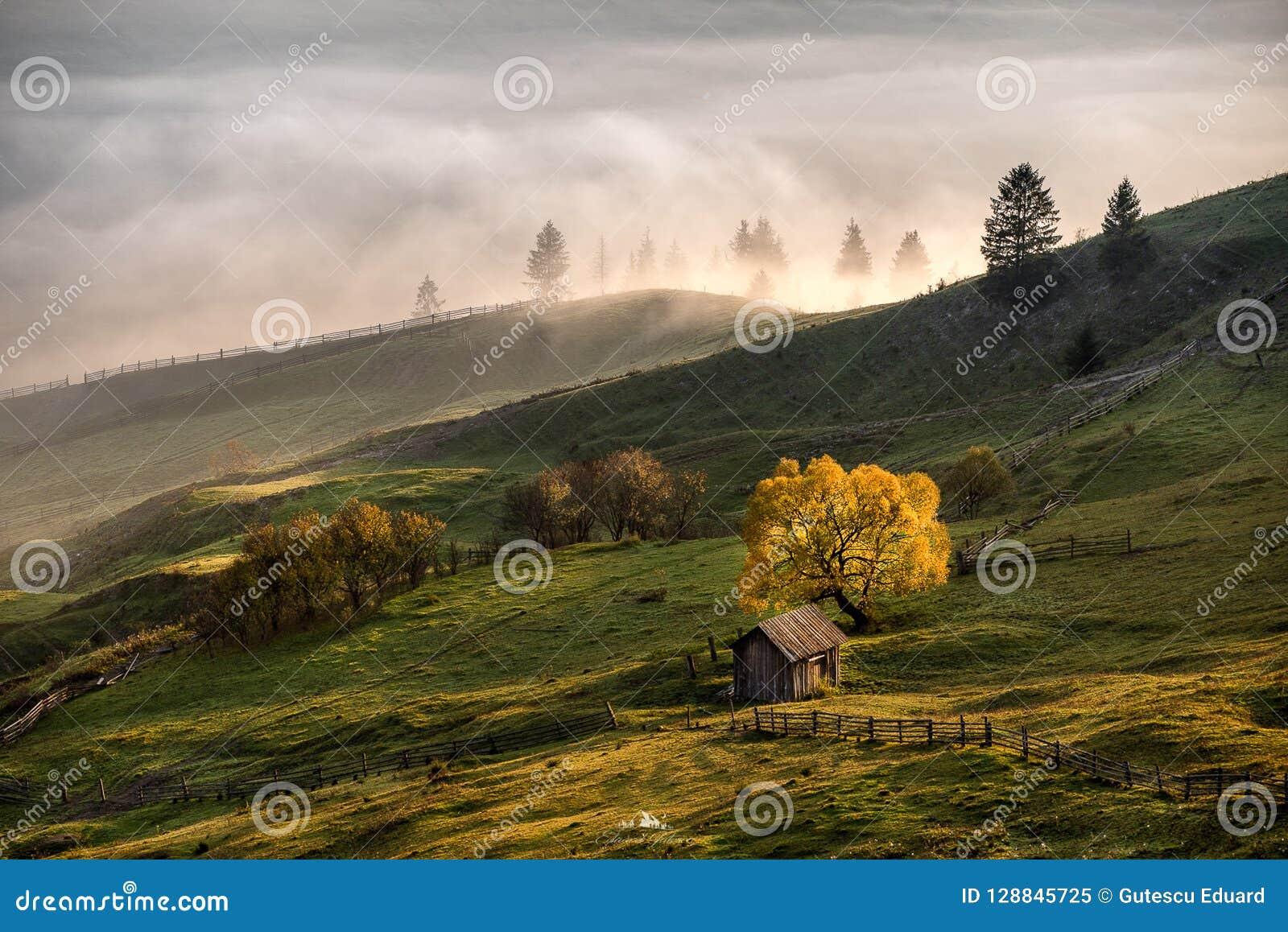 Bucovina-Herbst-Sonnenaufganglandschaft in Rumänien mit Nebel und Bergen