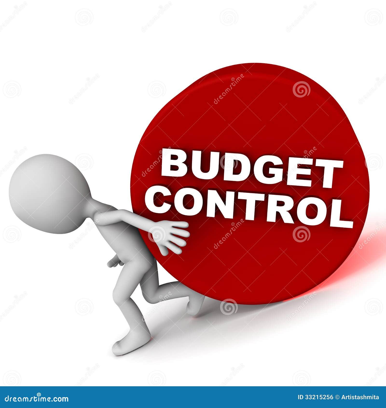Budżet kontrola