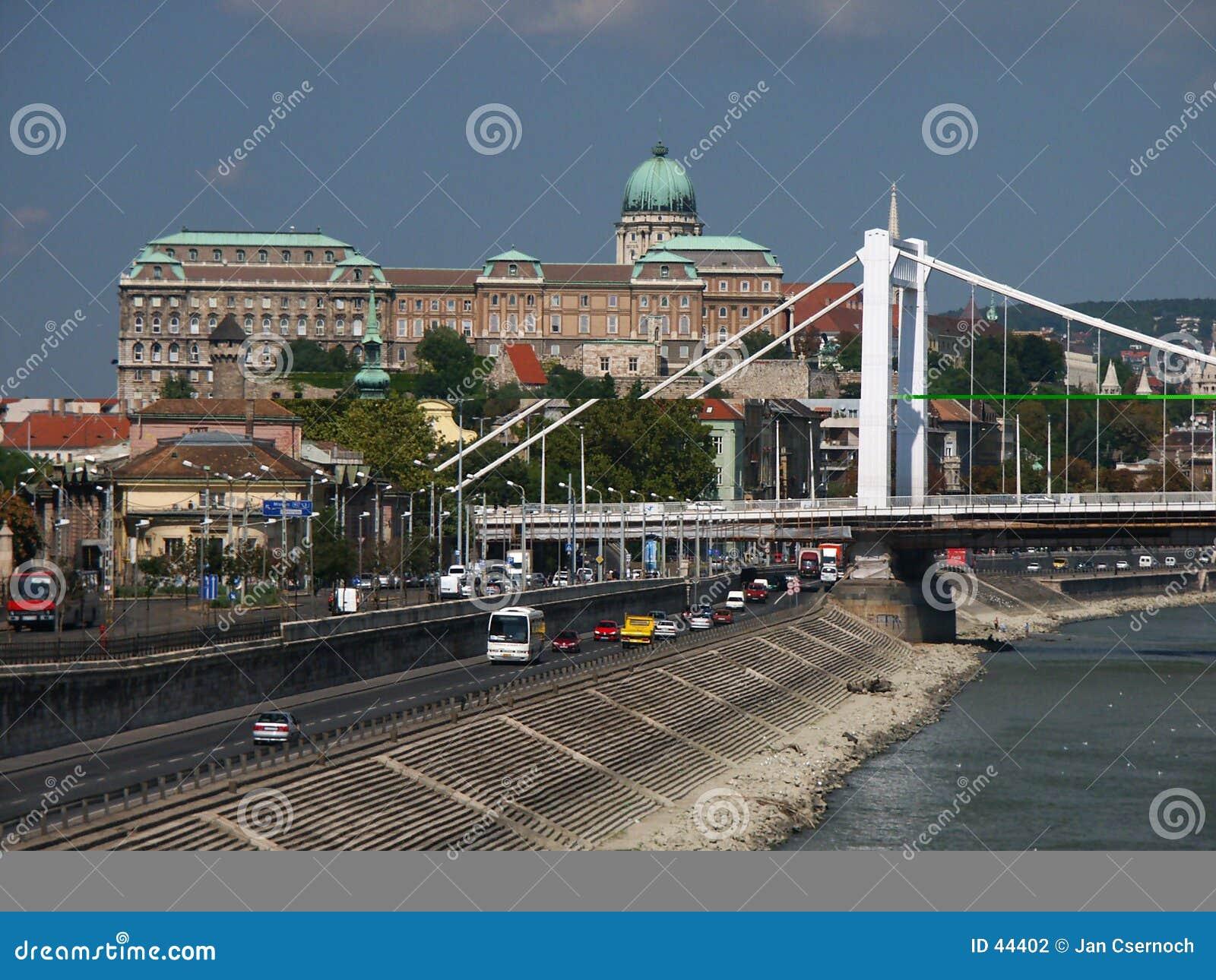 Download Buda Castle And Elizabet Bridge Stock Photo - Image of water, cupola: 44402