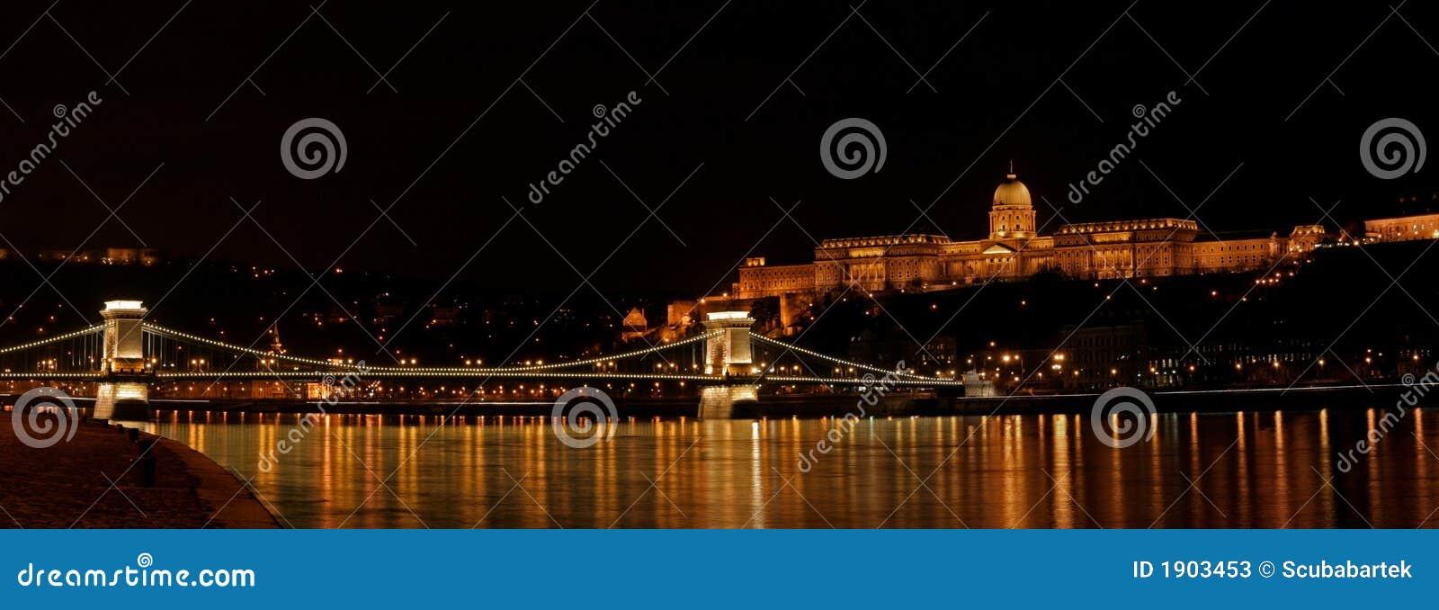 Buda castle and Szechenyi bridge