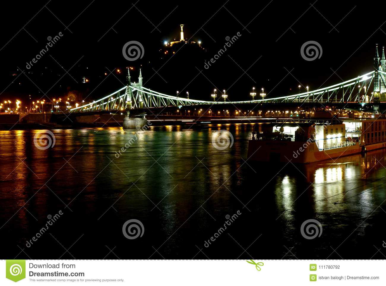 Liberty Bridge over the Danube in Budapest at Night