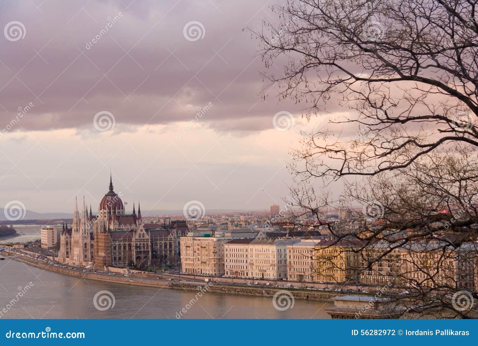 Budapest romantique, Hongrie, en hiver, avec le Parlement et les branches d arbre nues en vue