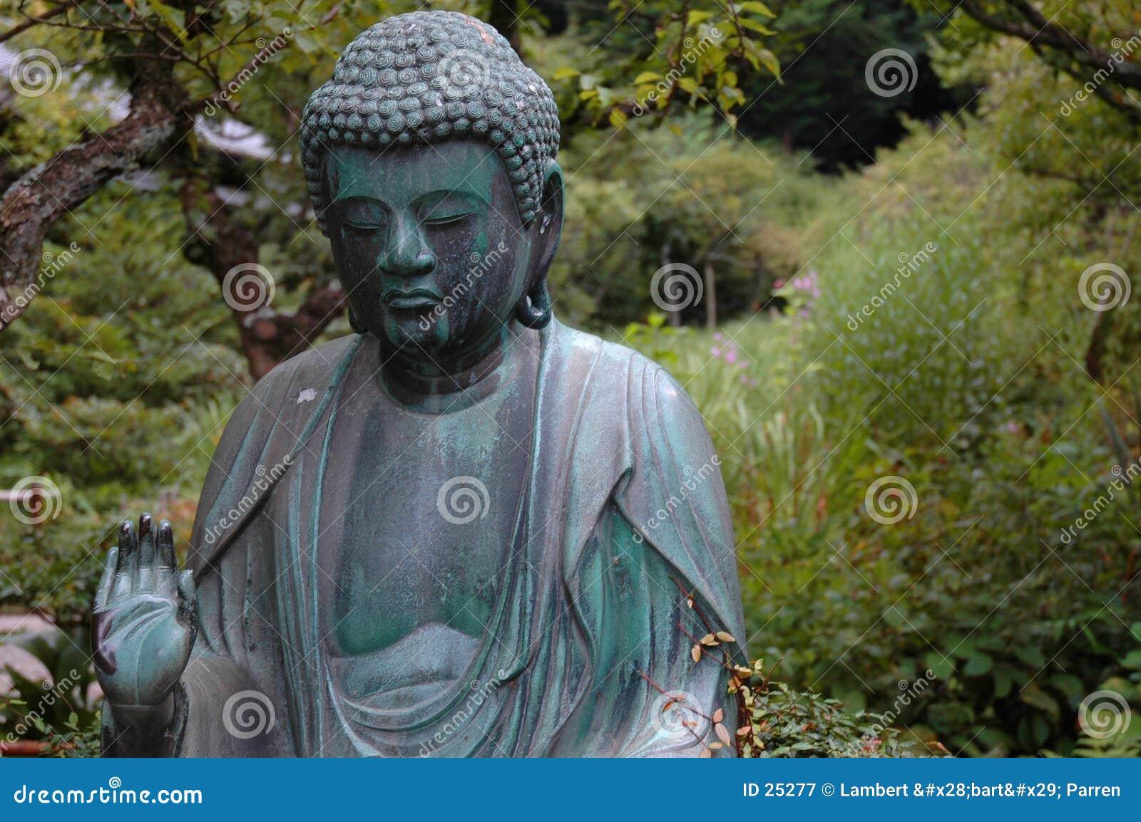 Budda amida
