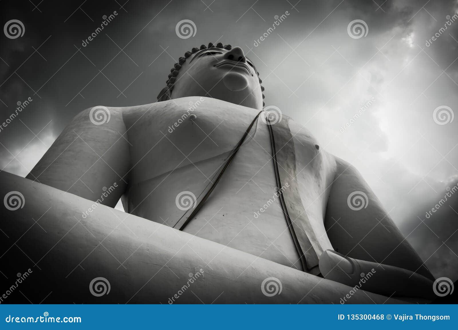 Buddha duży wizerunek