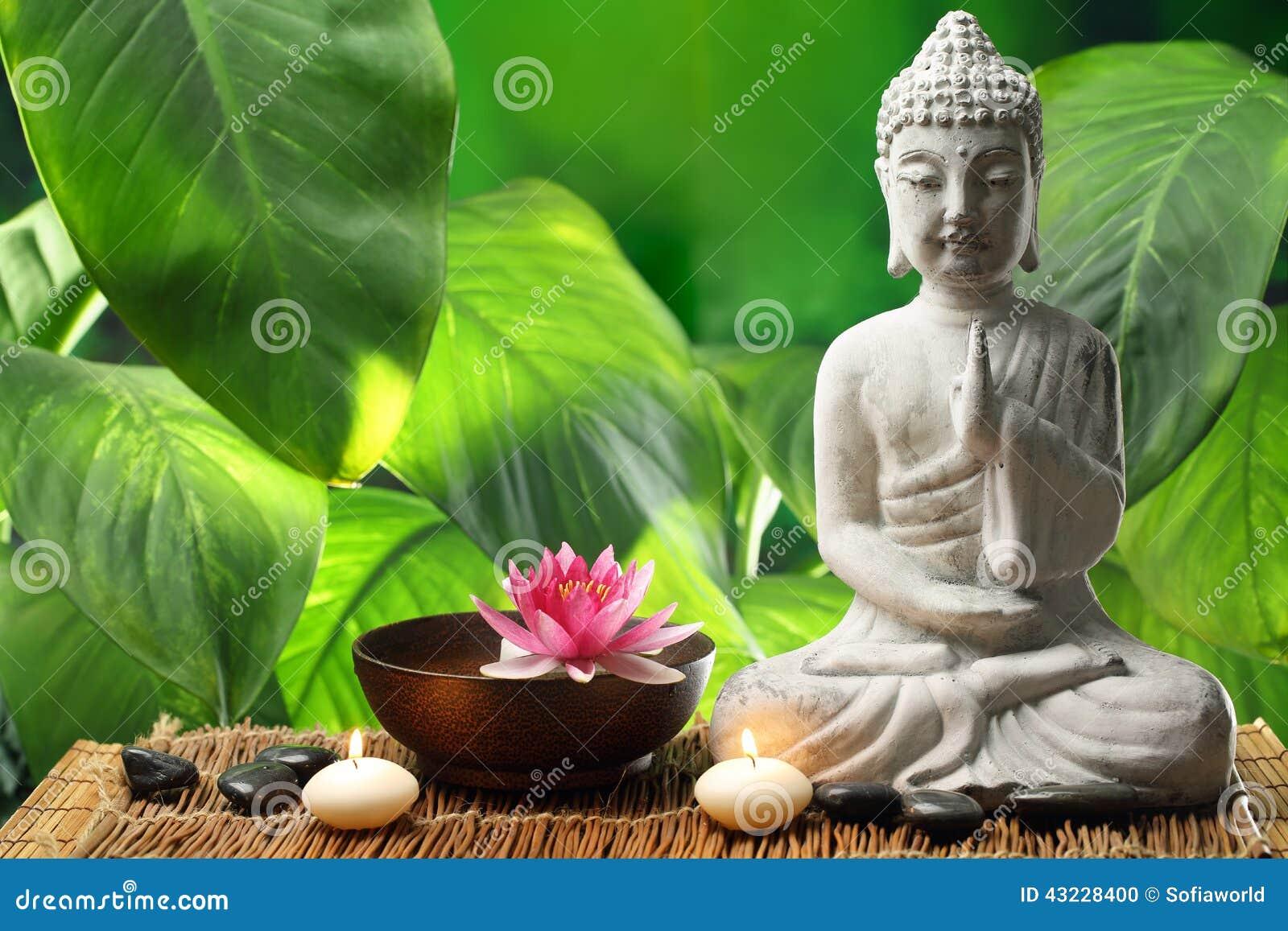 Buddha en la meditación